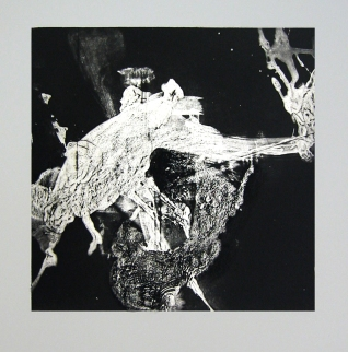 silk mezzotint_FIGHT2